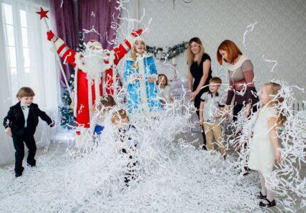 Царство Деда Мороза-1